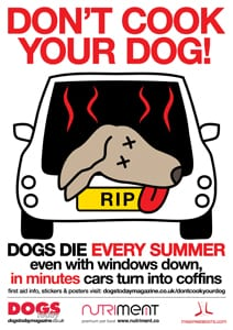 Don't Cook Your Dog - Dogs Today Magazine