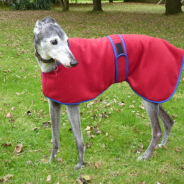 Fleece PJs Greyhounds