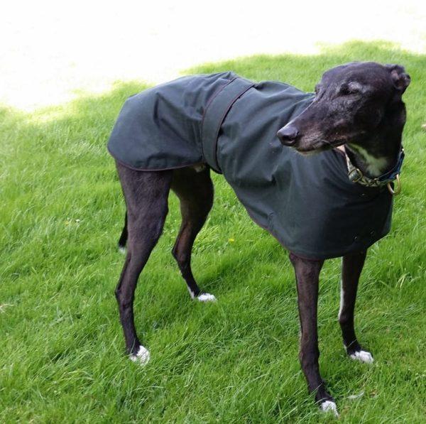 Hunter Wax Dog Jacket