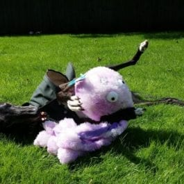 Dog Toys, Playtime & Cuddles