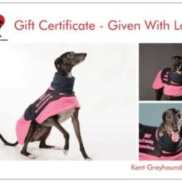 Charity Fundraising Gift Certificates