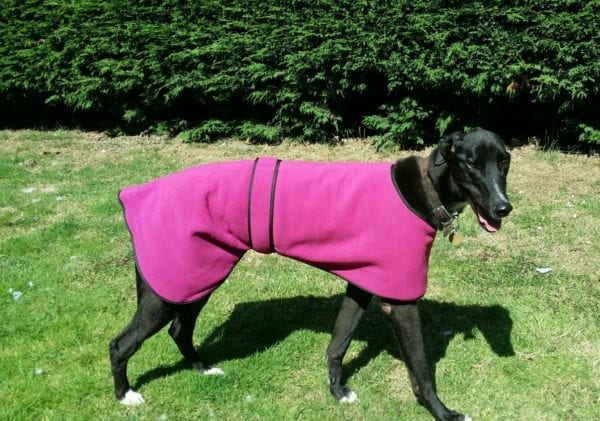 Fleece Dog Coat Or PJs