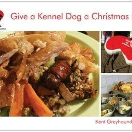 Christmas Lunch At Kennels