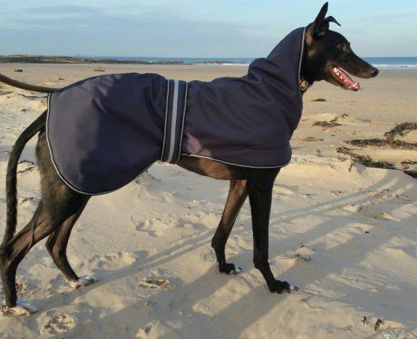 Outhwaites Padded Greyhound Coat