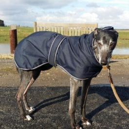 Outhwaites Padded Greyhound Coat