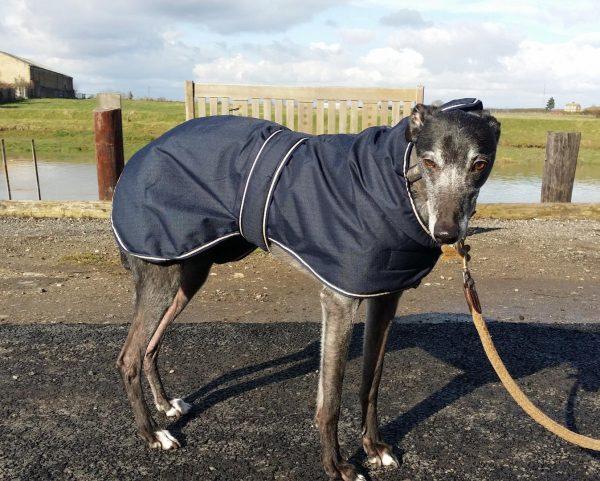 outhwaites blue greyhound coat
