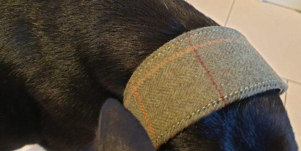 Greyhound & Lurcher Collars tweed