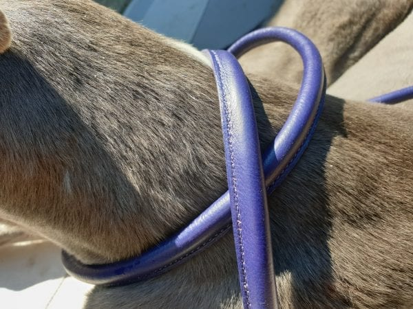Double Ended Leather Dog Leads Digby & Fox