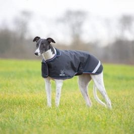 Greyhound Waterproof  Coat Digby & Fox